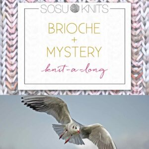 "Färbung des Monats - SOSU KNTIS MKAL meets ""Free like a Bird"" Specialedition"